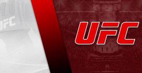 Custom UFC Background