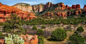 Arizona legalises sports betting