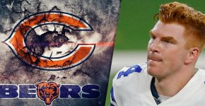 Andy Dalton Chicago Bears Background