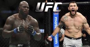 Rozenstruik Vs Sakai UFC